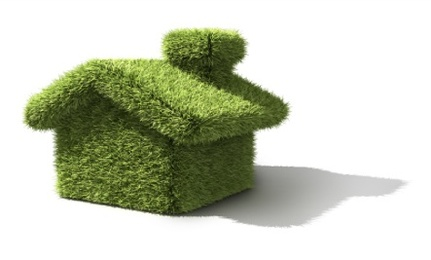 At What Cost Do We Want Green Homes?