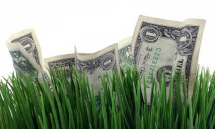 Make the Most of Your Green Dollar