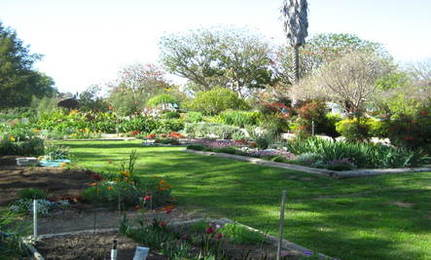 Gardening Clubs and Classes