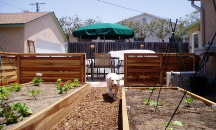 simple ways to create a dog friendly garden - Garden Ideas For Dogs