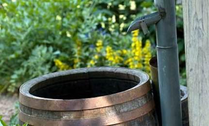 Water-Saving Rain Barrels
