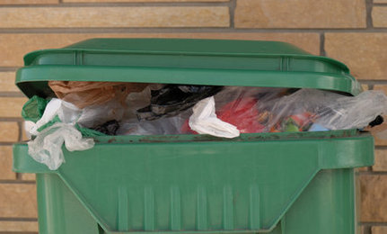 Get Rid of Maggots and Flies in Your Trash