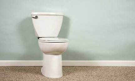 Water Saving Tips for Your Toilet