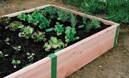 Easy Outdoor Raised Garden Beds