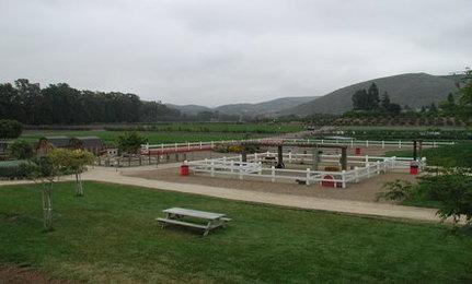 Want To Save Farmland? Visit A Farm