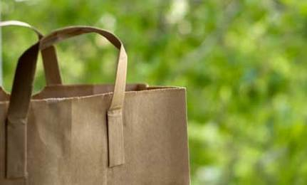 Paper Bags vs Plastic Bags: Which is Really Better?