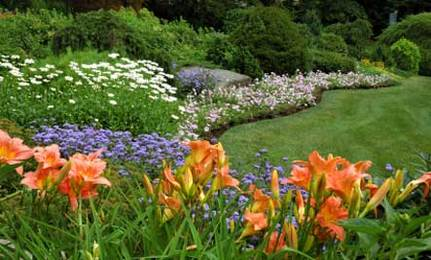 Should You Buy A Smart Irrigation System For Your Lawn And Garden?