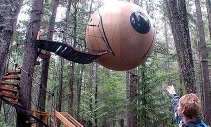 12 Stunning Tree Houses
