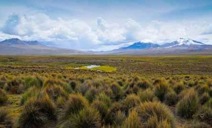 New Bolivian Law Would Give Rights to Nature
