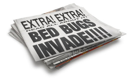 Top 10 Non Toxic Ways To Control Bed Bugs Care2 Healthy Living