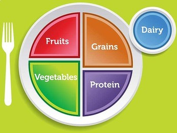 The End of the Pyramid Scheme: The Rise of MyPlate
