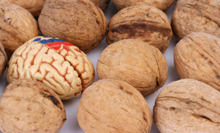 10 Foods That Promote Brain Health