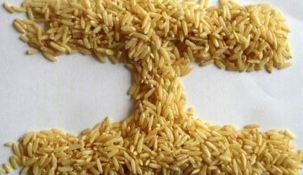 Brown rice vs brown rice pasta