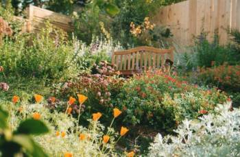 5 Tips for an Enchanting Summer Garden