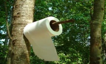 Toilet Paper vs. Bidet
