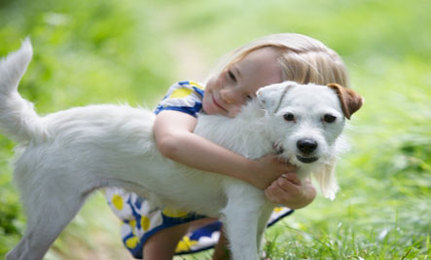 Protect Pets and Kids From Pesticides In Flea Collars