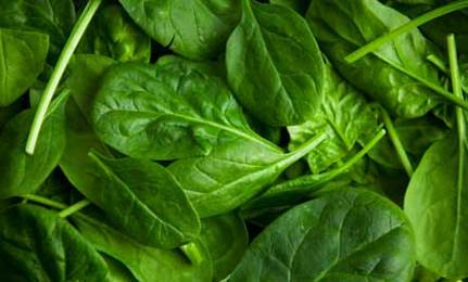 8 Benefits of Spinach: The First Superfood