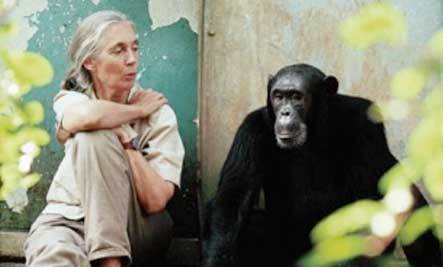 Jane Goodall on the Future, Aging and Conservation