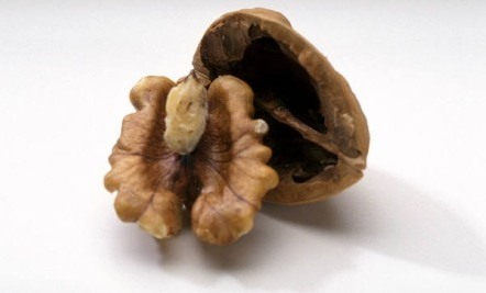 Walnuts: The Crinkly Powerfood