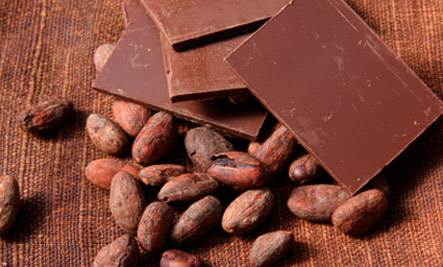 Climate Change Likely to Hit Chocolate
