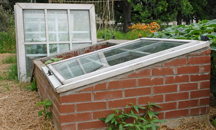 Use a Homemade Cold Frame to Grow More Veggies