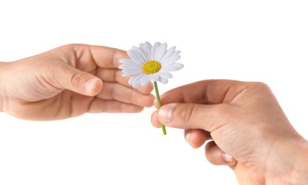 How Small Acts of Kindness Can Heal and Inspire