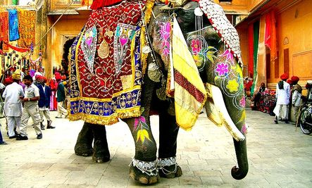 Elephant Accident Gets 1.3 Million Rupees
