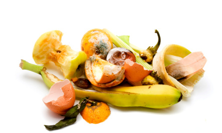 Don't Be So Trashy: Curbing Food Waste
