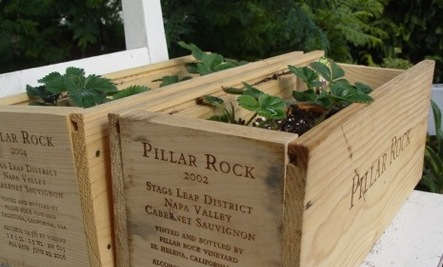 13 Uses for Wine Crates
