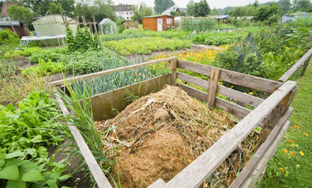 A Natural Approach to Gardening