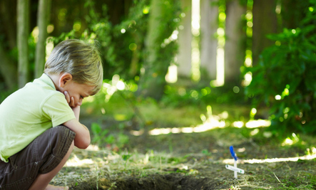 Do Young Children Really Need To Know About Death?