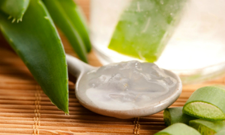 12 Uses for Aloe