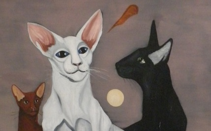 The Gemini Cat