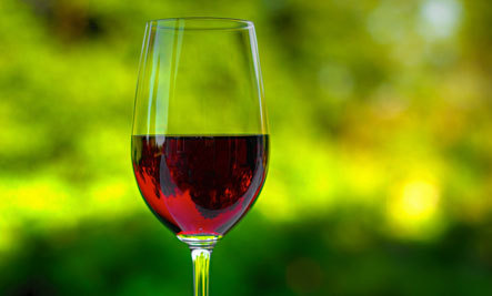 Eco-Lessons from Wine