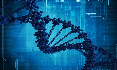 How Genes Determine Your Hair Type