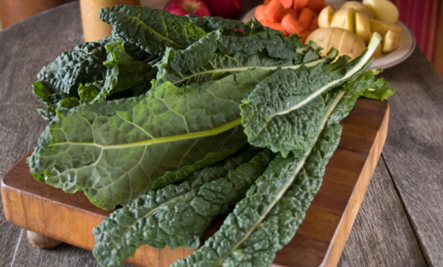 Superfood: 10 Tasty Kale Recipes