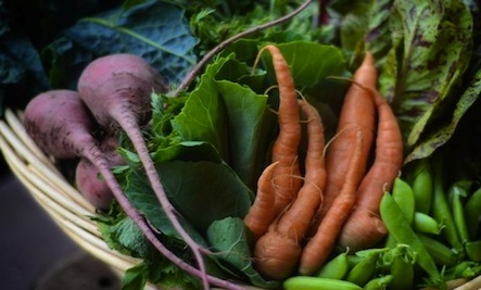 Make the Most of Your CSA Box