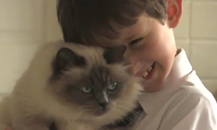Cat & Boy Are Best Friends (Video)