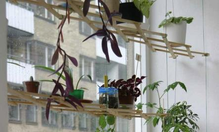 Create Instant Hanging Shelves for Houseplants