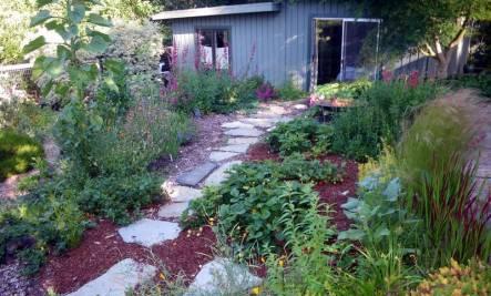 Essential Fall Garden Tips