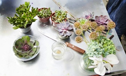 Creating Spontaneous Flower Arrangements In Your Backyard