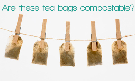 Are Tea Bags Really Compostable?