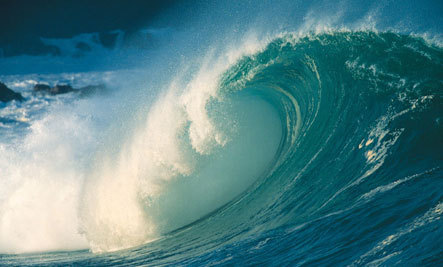 4 Ways To Surf The Waves of Change