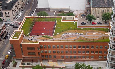 5 Hot Green Building Materials