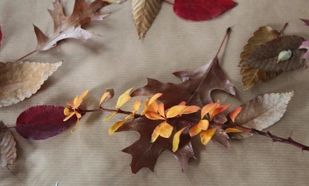 Making Gilded Holiday Decor With Foraged Leaves