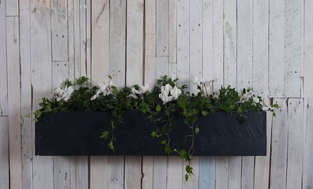 A Quick & Elegant Window Box