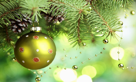 10 Ways to Recycle Christmas Trees
