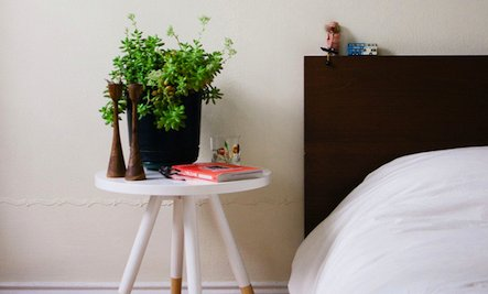 Do You Keep Plants in Your Bedroom?
