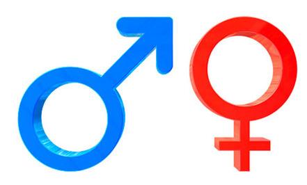 6 Gender Stereotypes Around the World