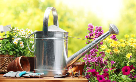 Gear Up for Gardening Season With These Great Tools